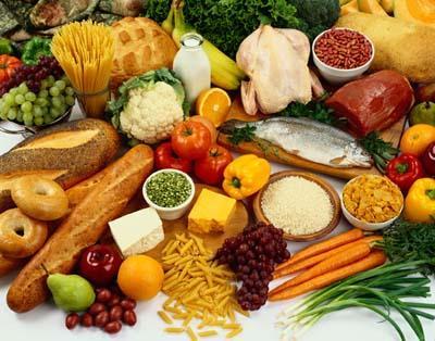 protein in diet