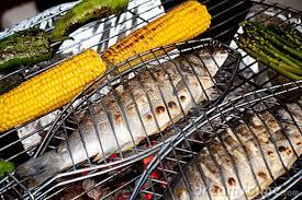 Fabulous fresh mackerel