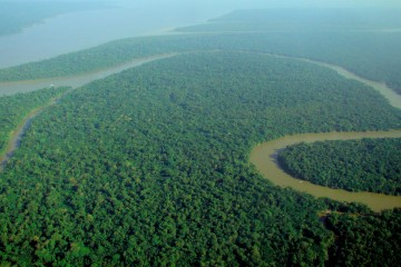 Amazon Rainforest from Above