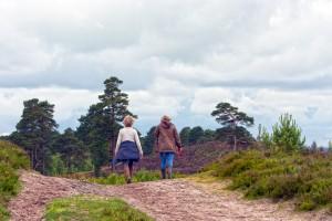 Healthy into older age