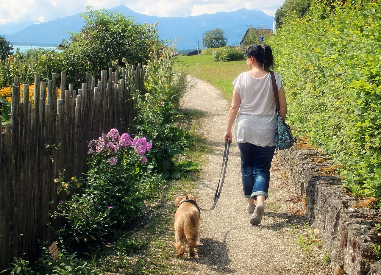 Taking dog for walk, keeping physically active