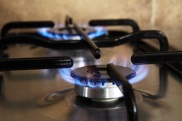 gas burning appliance